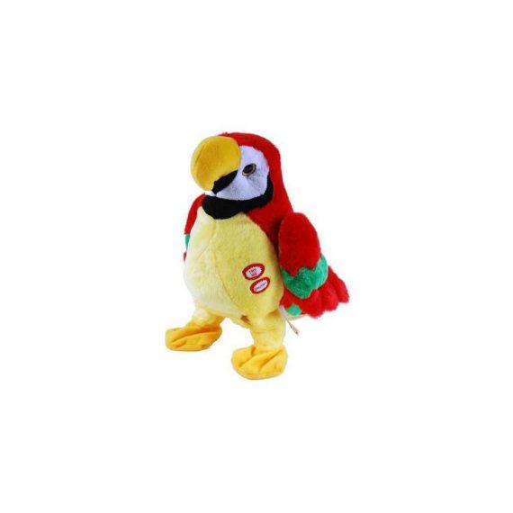 papuga klara powtarzajaca madej